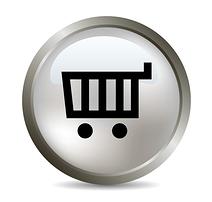 Make an Online Payment